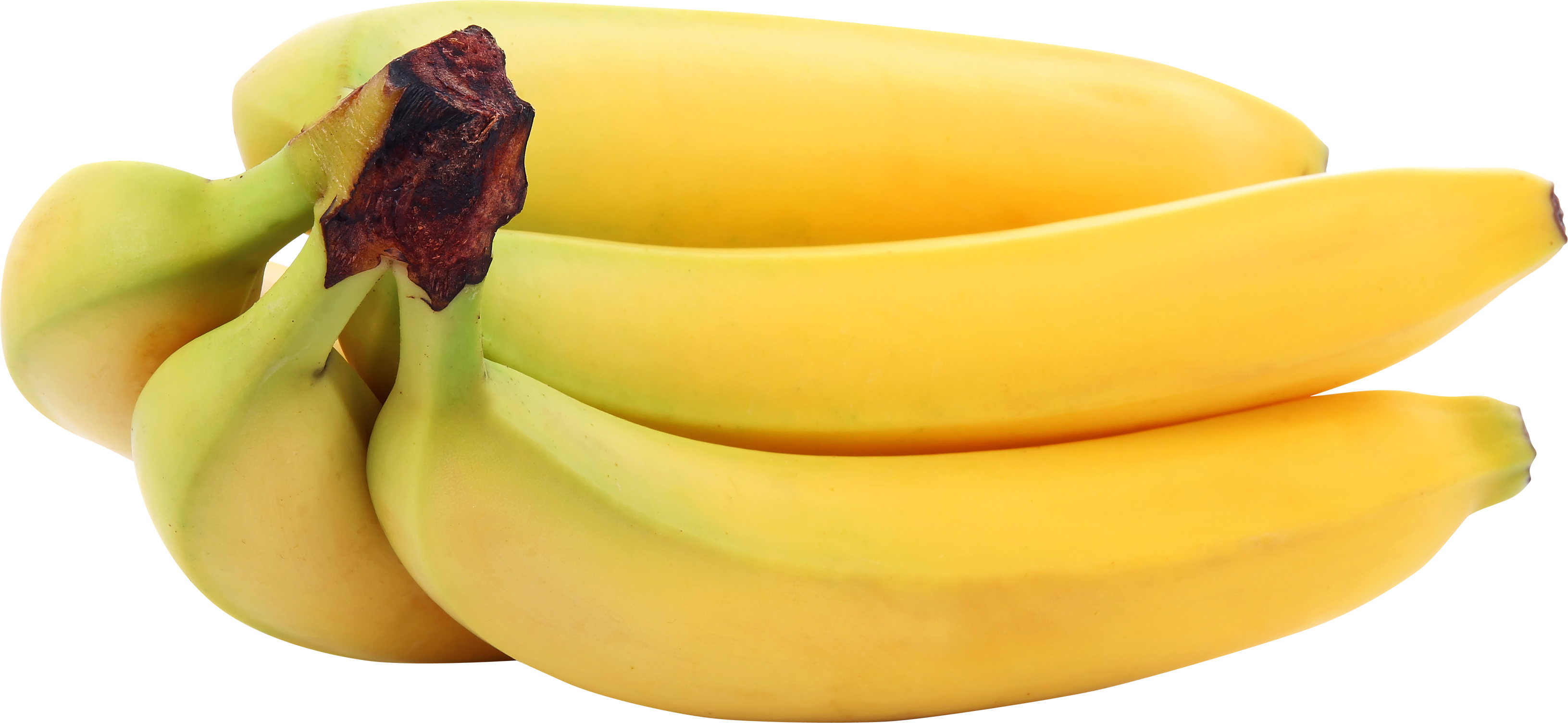 Yellow image purepng free. Bananas png freeuse download