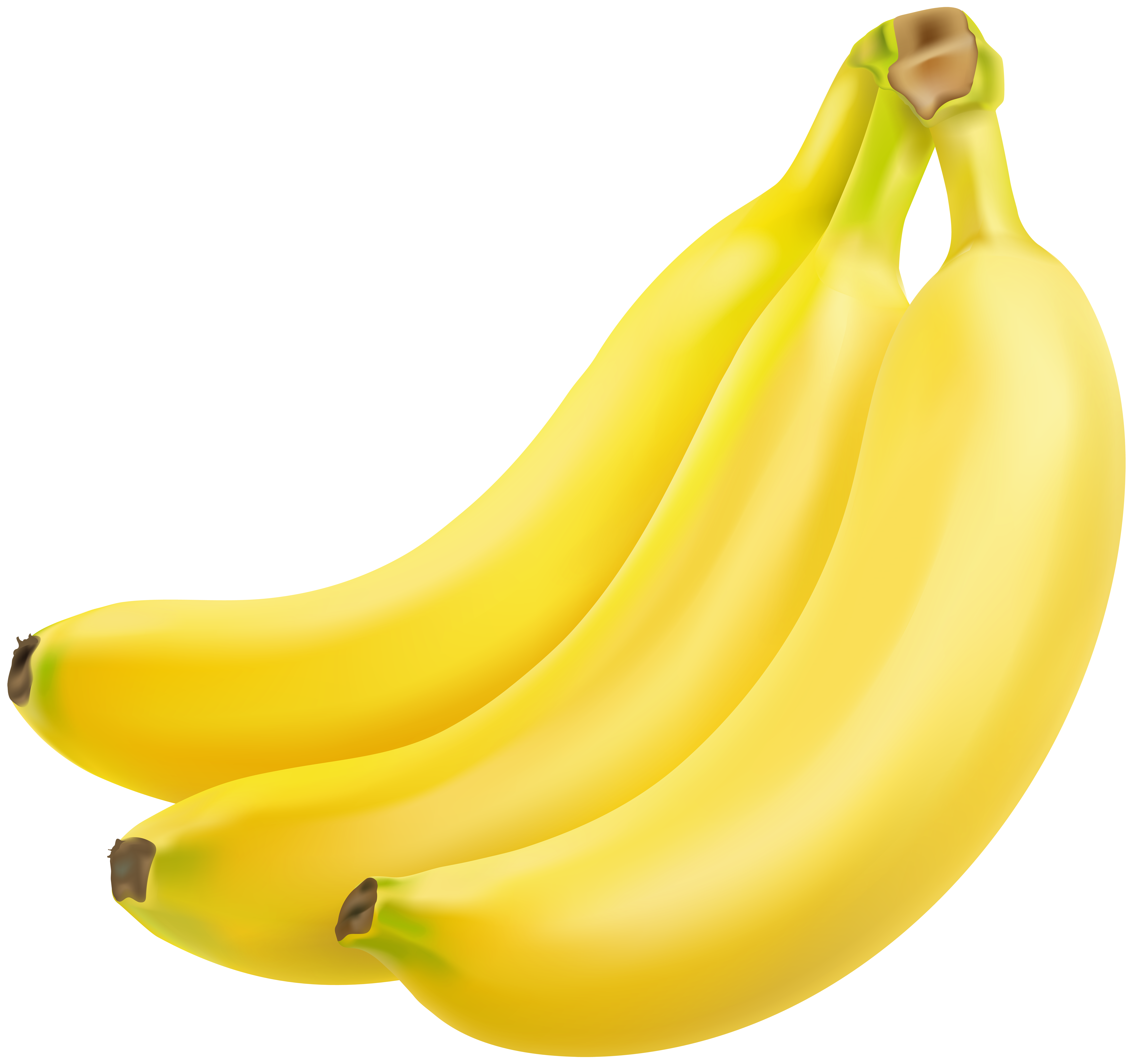 Bananas transparent high quality. Image gallery yopriceville view