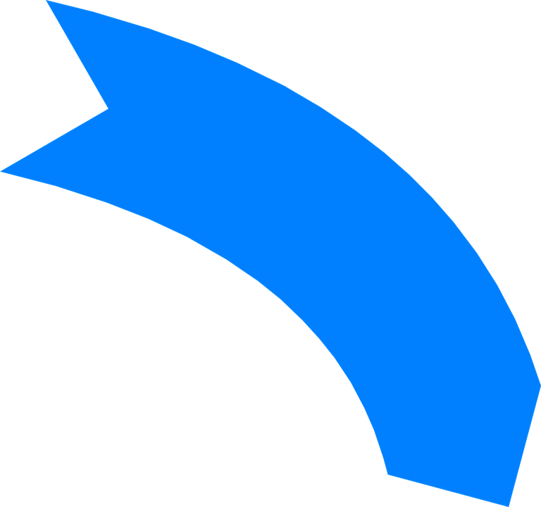 curves vector banner