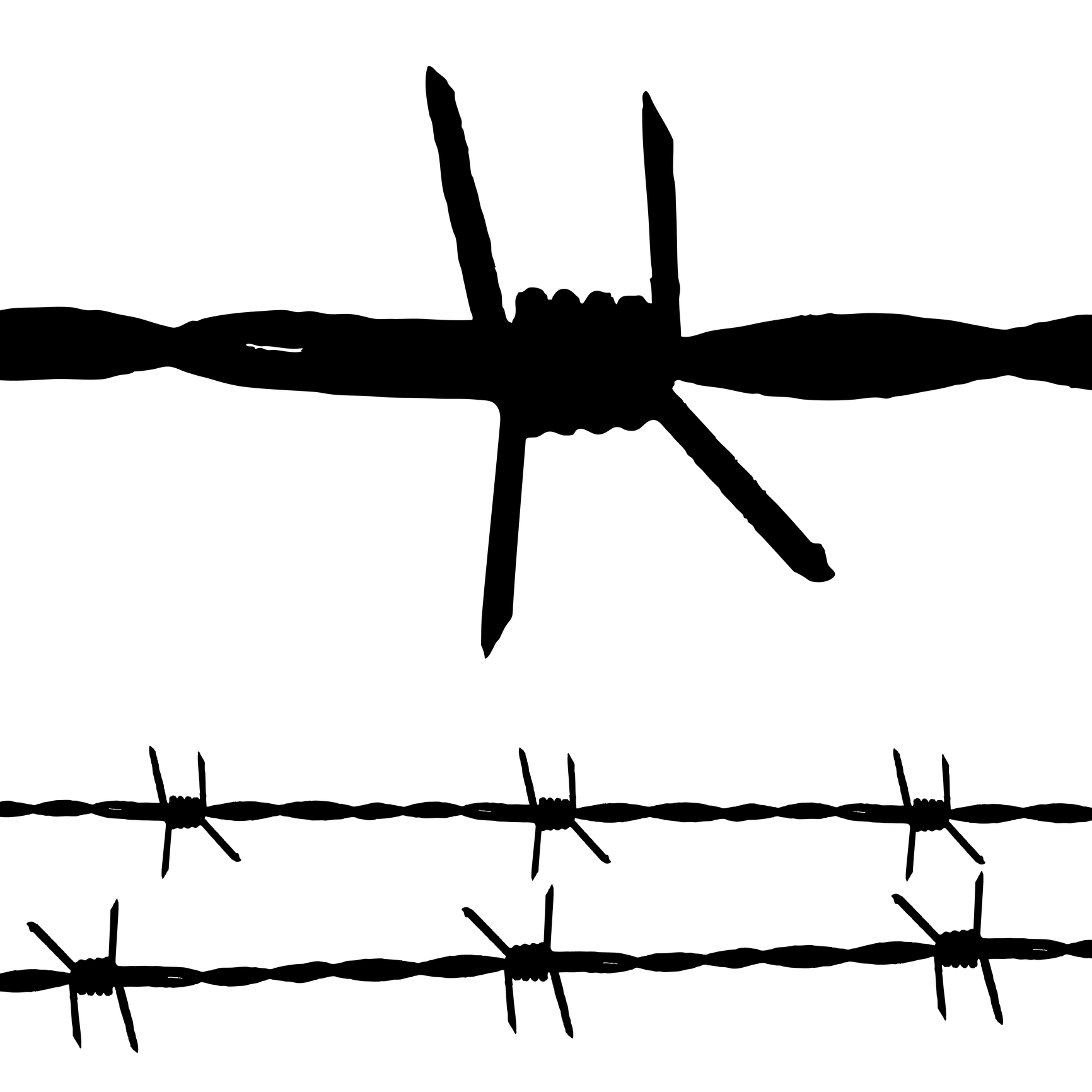 Barb wire clipart thorn. Free download clip art
