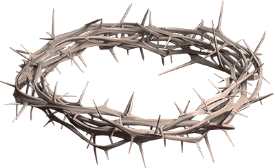 Christian vector crown thorns. Of png hd transparent