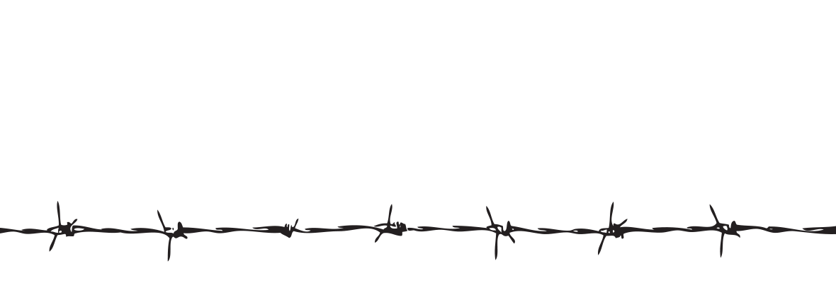 Transparent wires bard. Barbwire png images free
