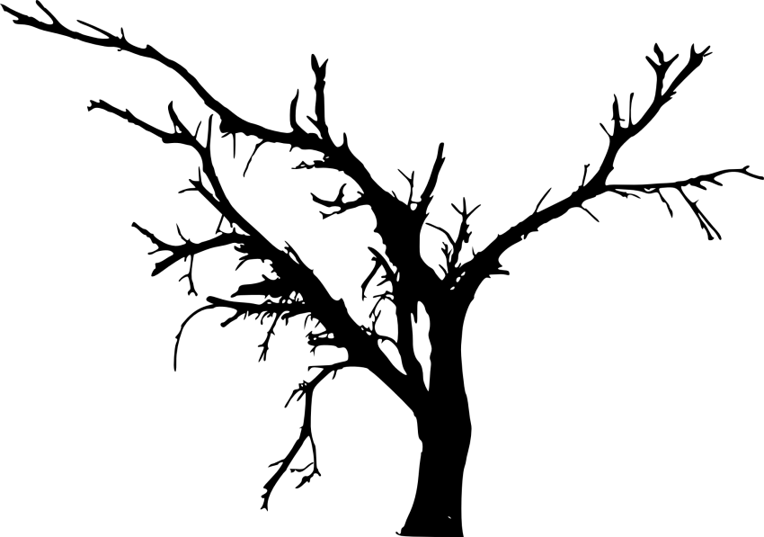 Bare branch png. Simple tree silhouette free