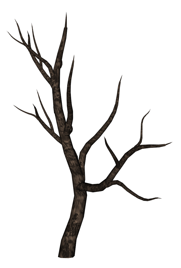 Bare branch png. Tree branches silhouette at
