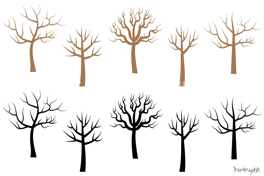 Science clipart tree. Bare no leaves trees