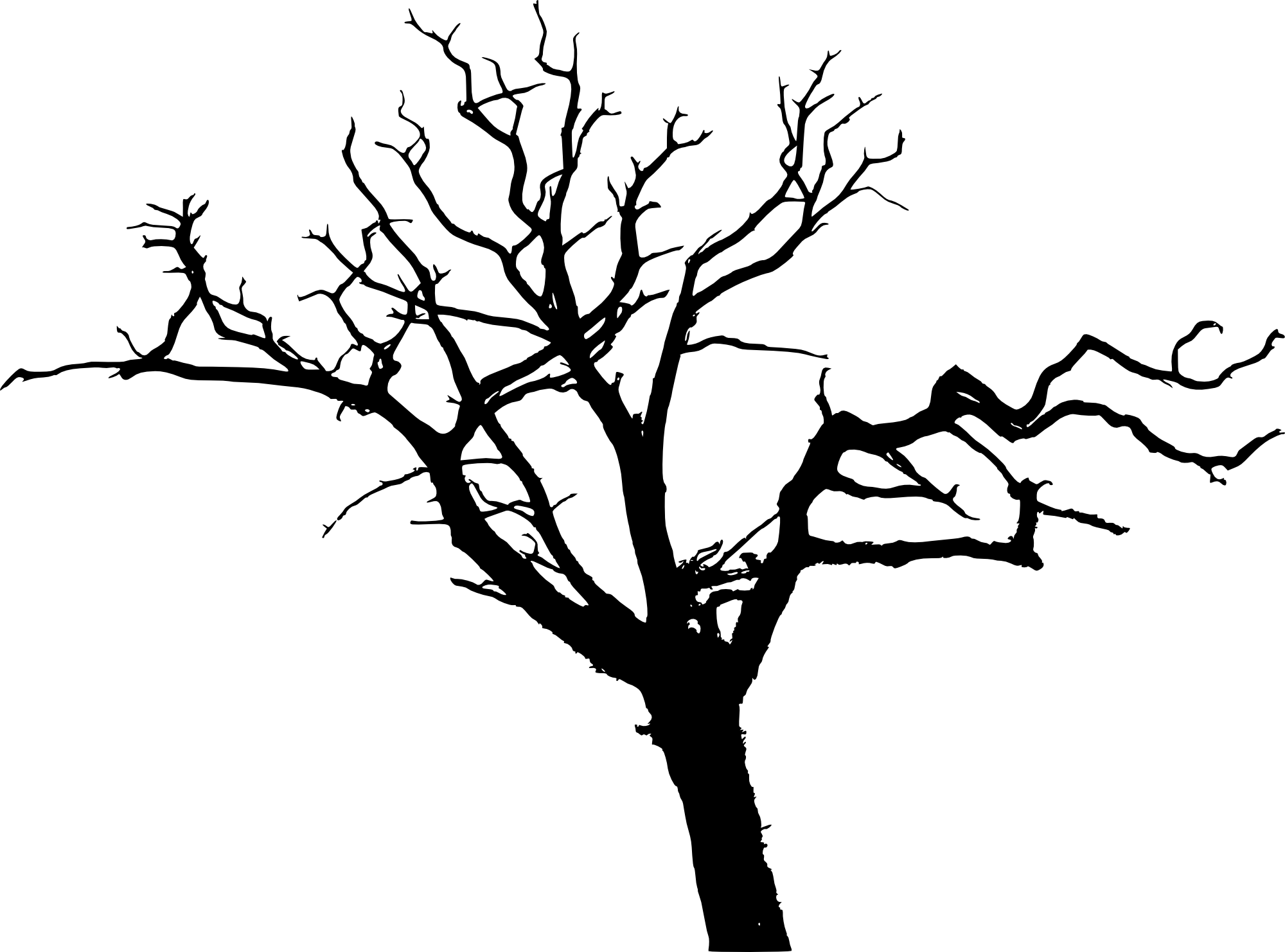Port drawing tree. Silhouette at getdrawings com