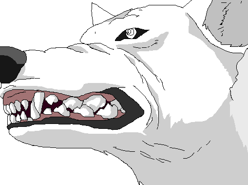 Wolfs rain by kibawolfx. Bark drawing base picture free download