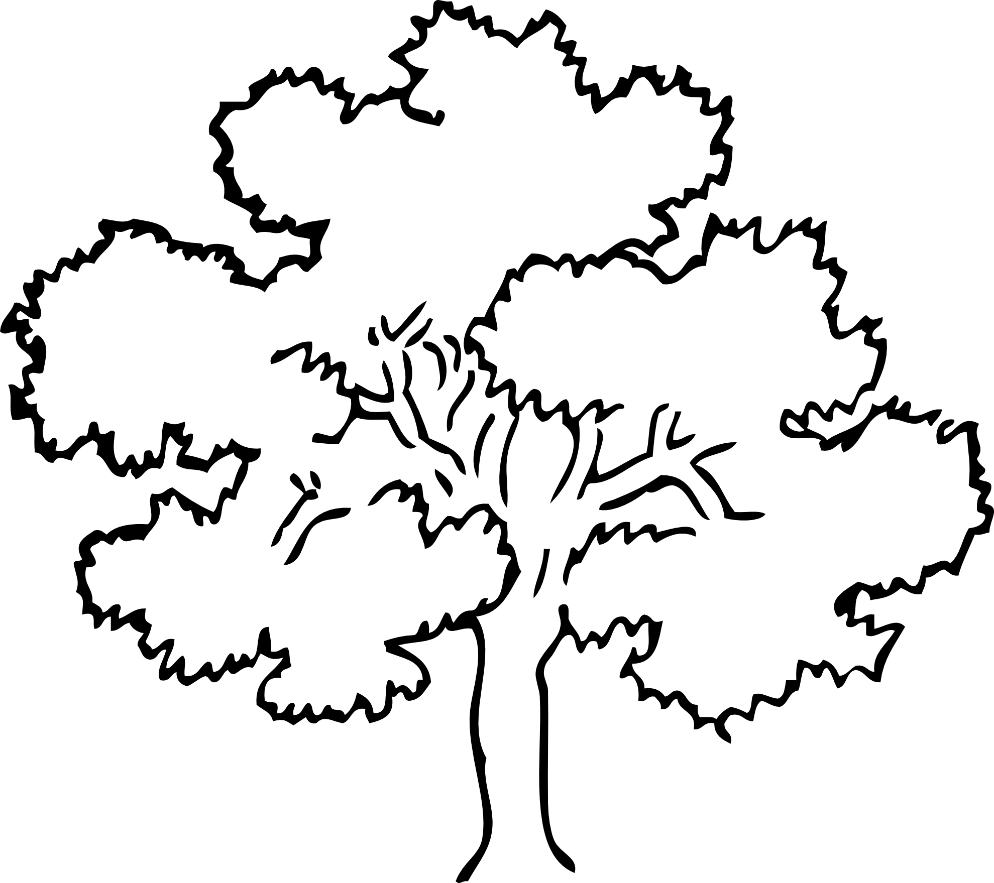 Bark drawing oak tree. White at getdrawings com