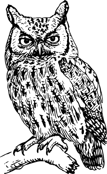Bark drawing tonal. Owl silhouette template clip
