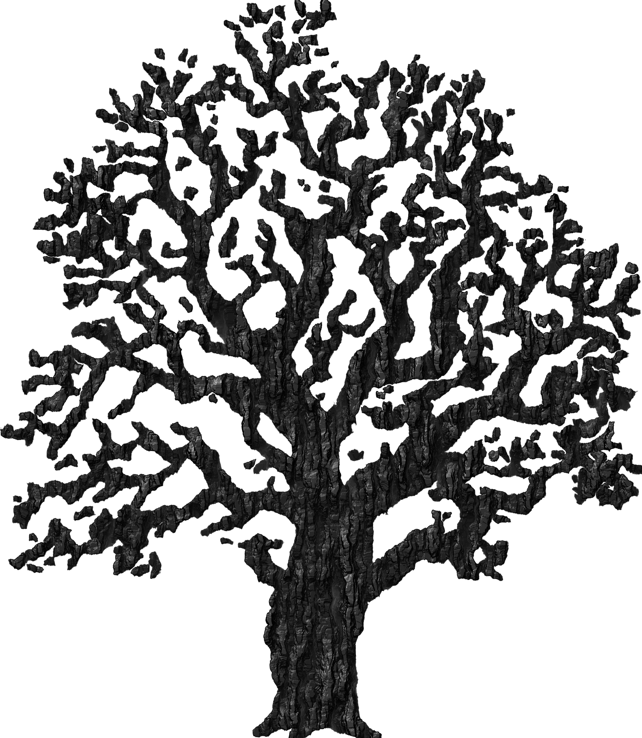 Bark drawing clip art tree. Clipart with big image