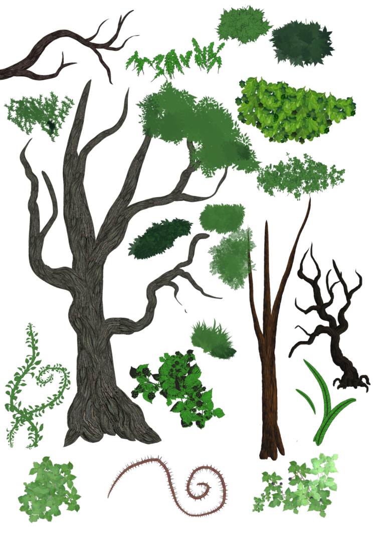 Bark drawing tree stem. Brushes trees plants and