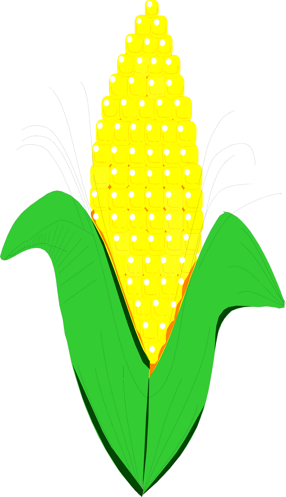 Corn clipart animated. Free stock photo illustration