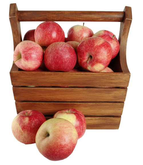 Basket of apples png. In a image pngpix