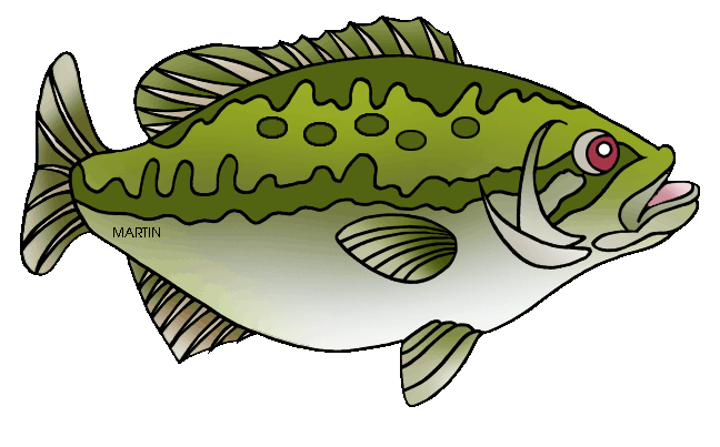 Bass clipart. United states clip art