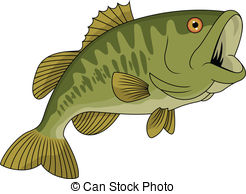 Bass clipart. Largemouth illustrations and clip free