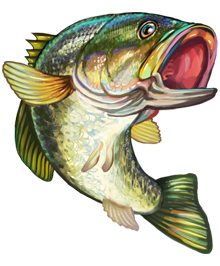 Lake bass pinterest lakes. Crown clipart fish clip freeuse download