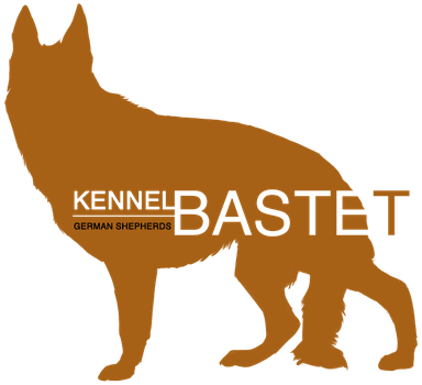 Bastet drawing dog. Kennel policies by saarbastet