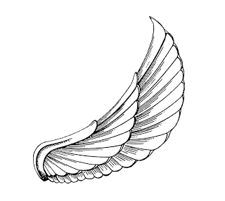 Bastet drawing wing. Egyptian wings google search
