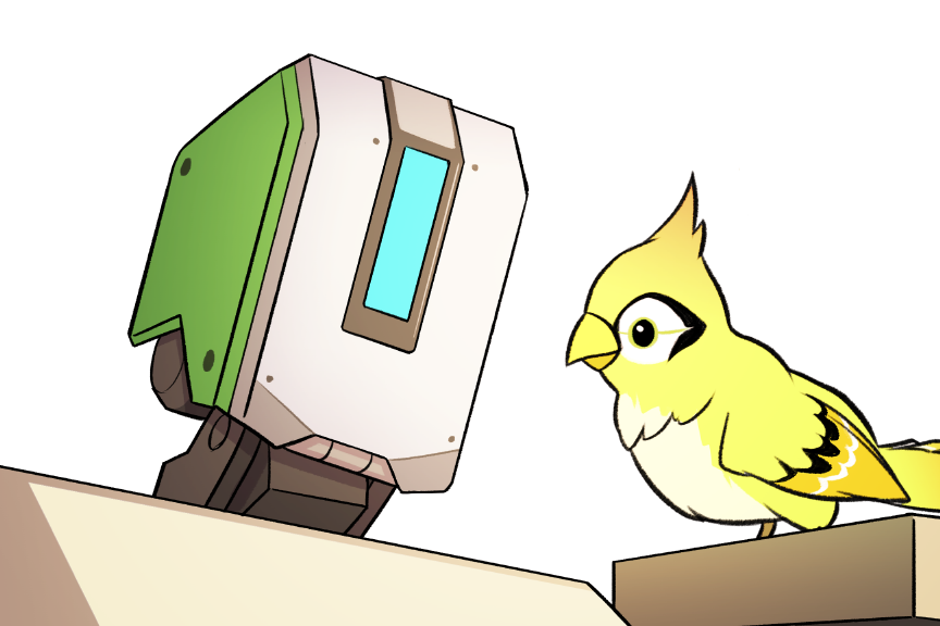 Bastion drawing bird. Nancy teeple khrysm on