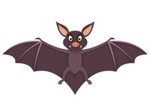 To the clipart bat. Free clip art pictures