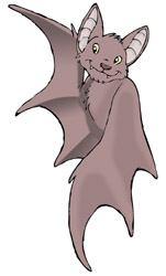 Bat clipart bumblebee bat. Bats info and online