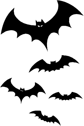 Bats png. Image flying dragon story