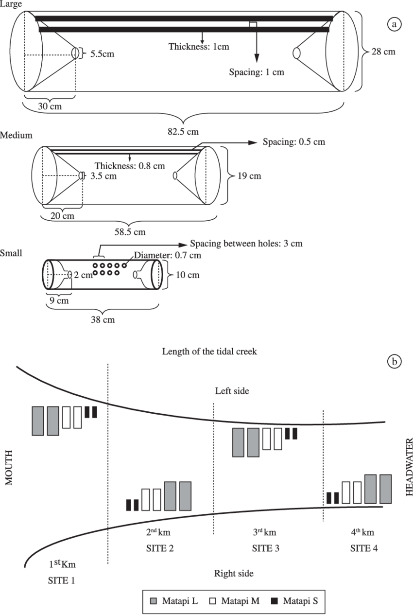 Bay drawing model figure. A schematic of sampling