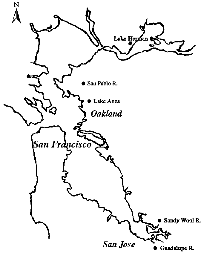 Bay drawing san francisco. Map of the area