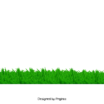 Lawn vector simple. Grass png images download