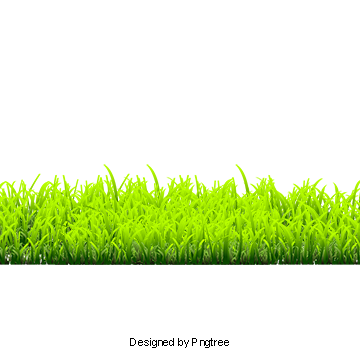 Swamp vector isometric. Grass png images download