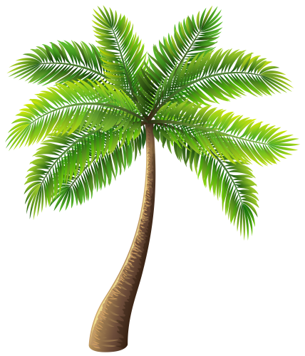 Coconut tree vector png. Palm clip art clipart