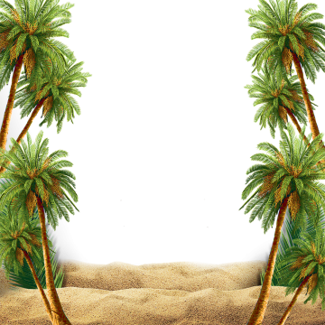 Png palm. Summer beach images vectors