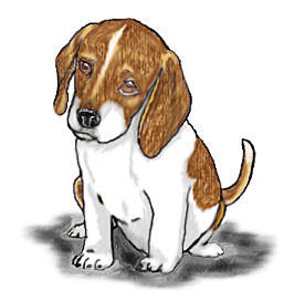 Beagle svg animated. Free cliparts download clip