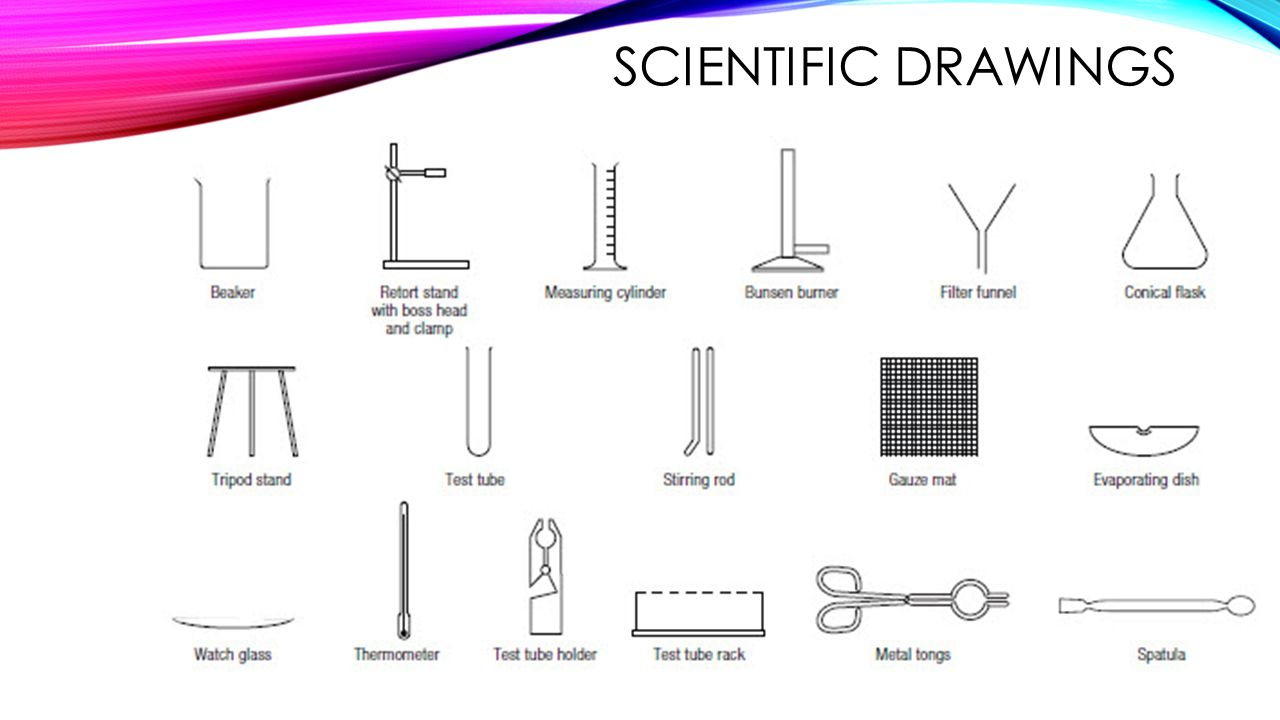 Beaker clipart scientific diagram. Science equipment drawing at