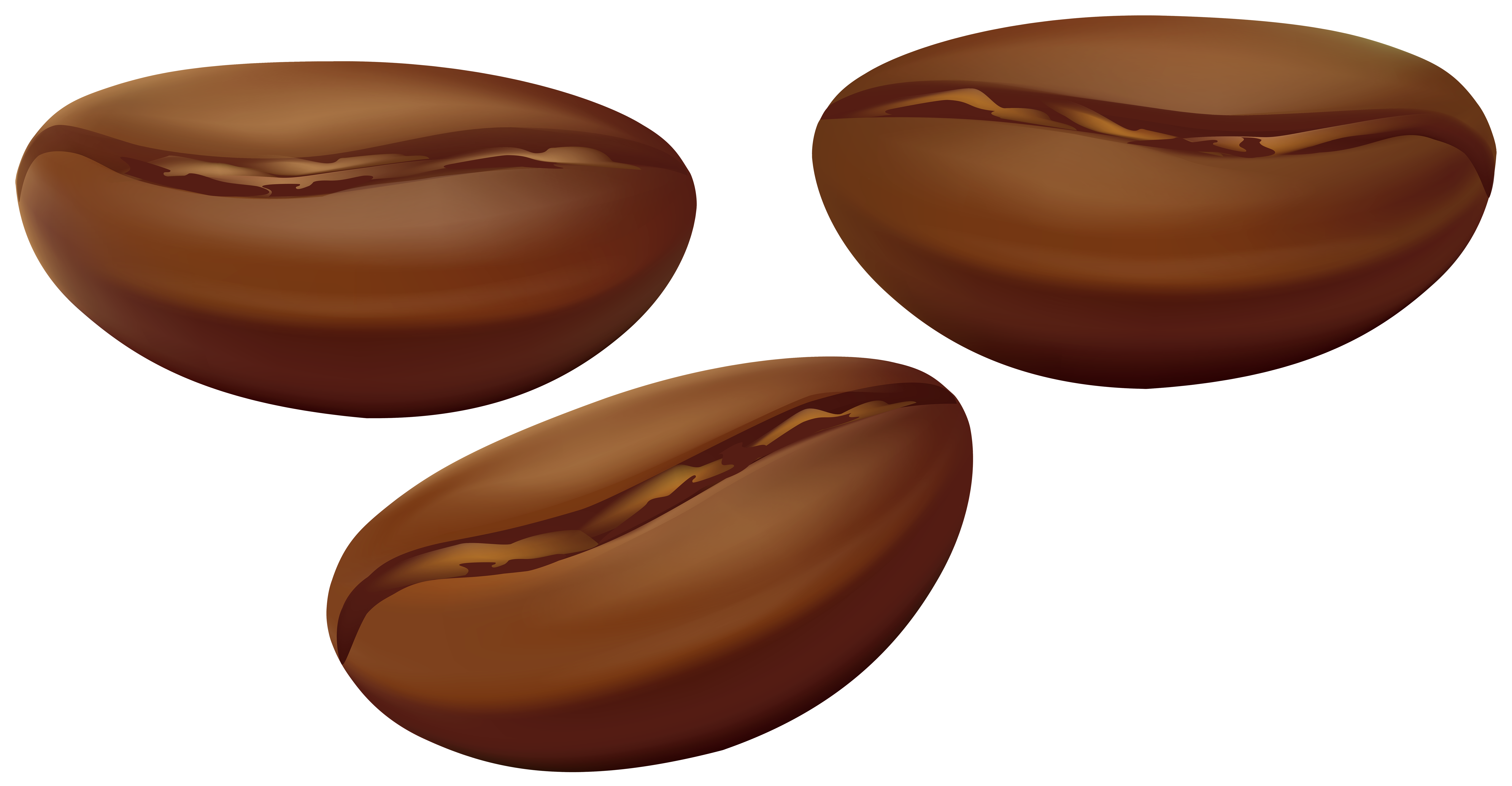 Bean clipart. Coffee beans transparent png png download