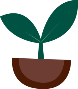 Plant vector png. Bean sprout character clip