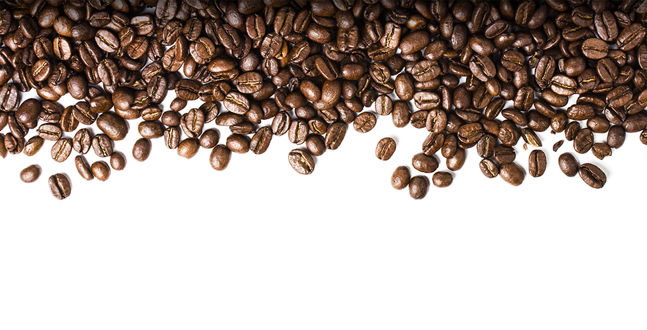Beans vector large. Coffee bean png transparent