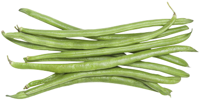 Beans vector transparent. Free green background clipart