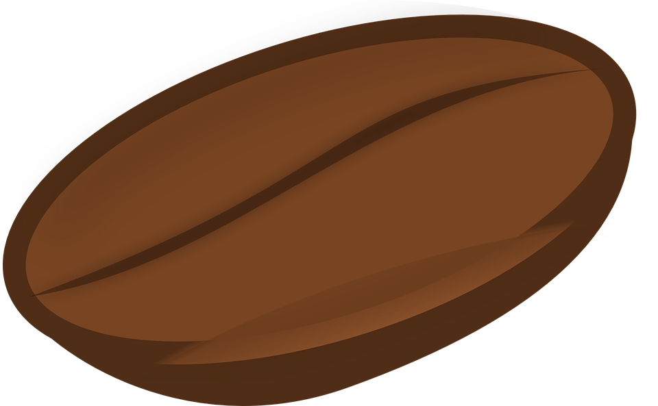 Cacao png . Beans vector transparent background jpg royalty free library