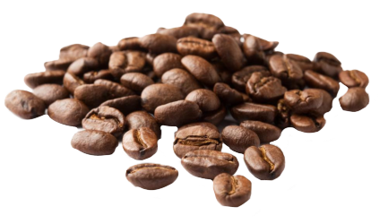 Beans vector transparent background. Coffee png images pluspng
