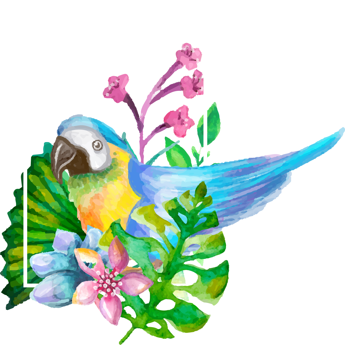 Drawing realism flower. Parrot watercolor painting realistic