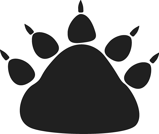 Bear claw png. Print clipart