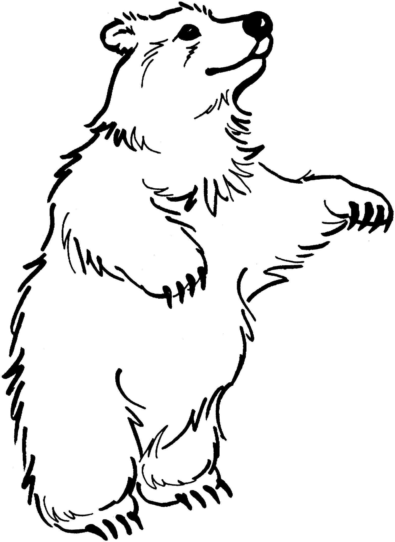 Bear clip art black and white. Awesome clipart gallery digital