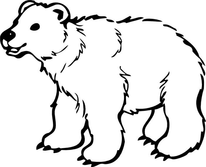 bear clip art black and white