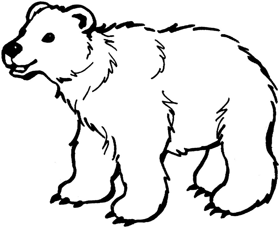 Bear clip art coloring. Cosy printable pages for