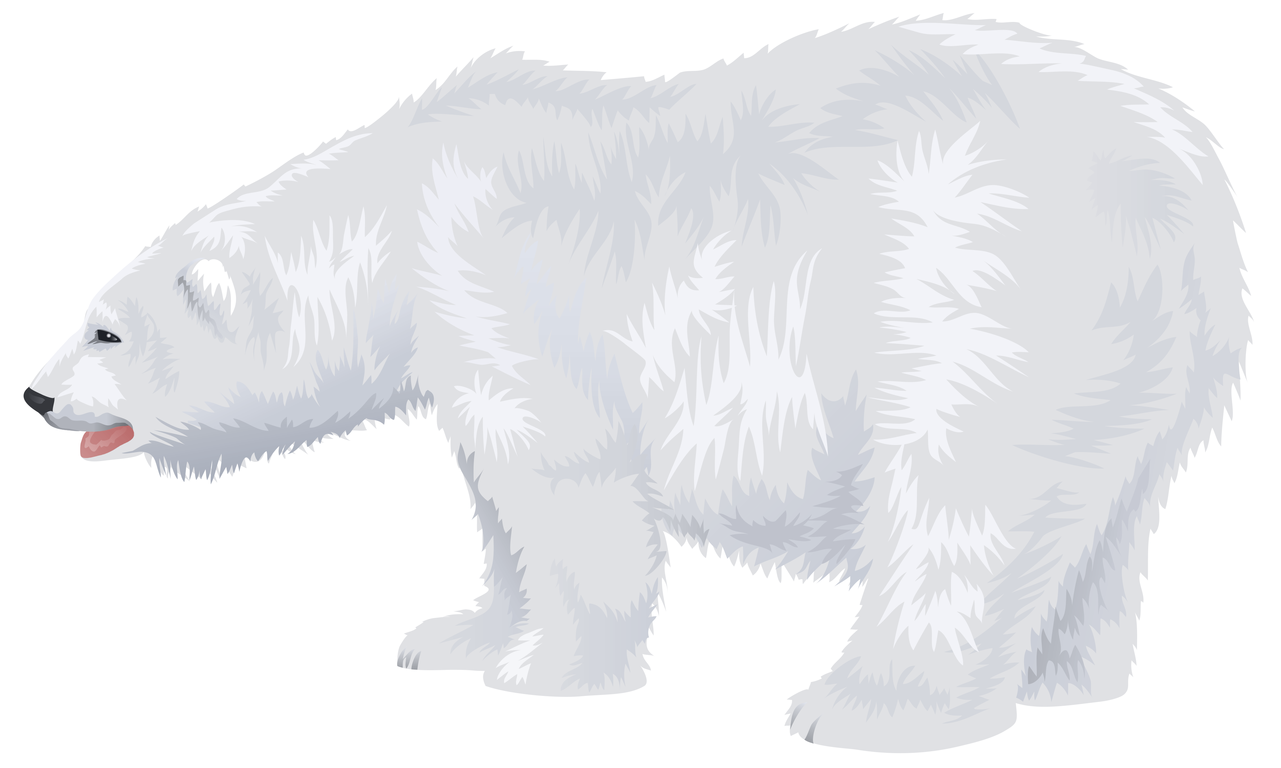 White polar png image. Bear clip art transparent background image library library