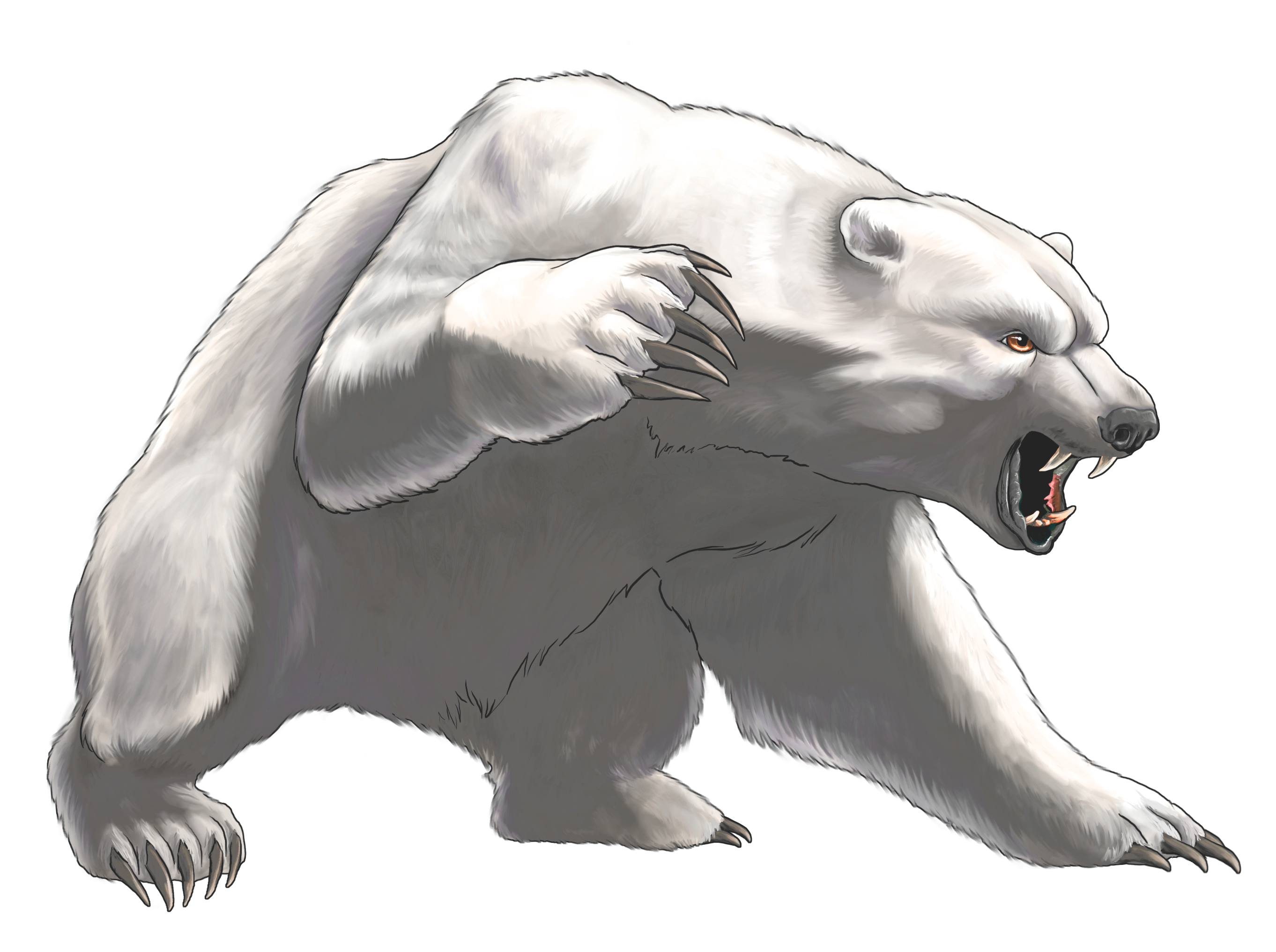 Bear clipart angry. White png best web