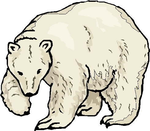 Bear clipart polar bear. Bears clip art farm