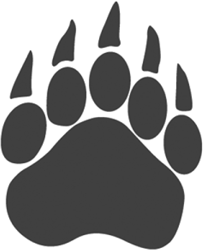 Transparent paw gray. Download hd bear png
