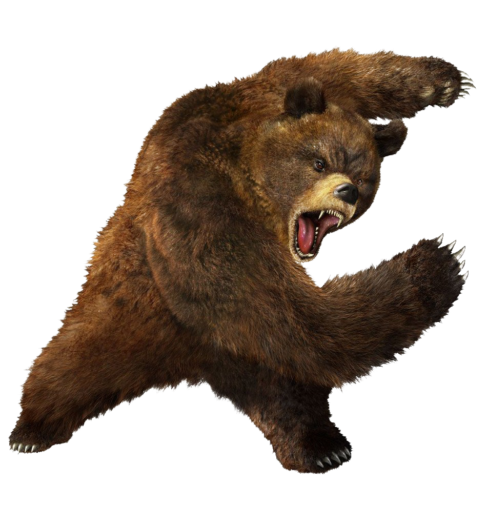 Bear png transparent